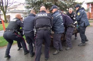 moose-tranquilized-orleans-ottawa-team-ncc-police-dec-15-2015