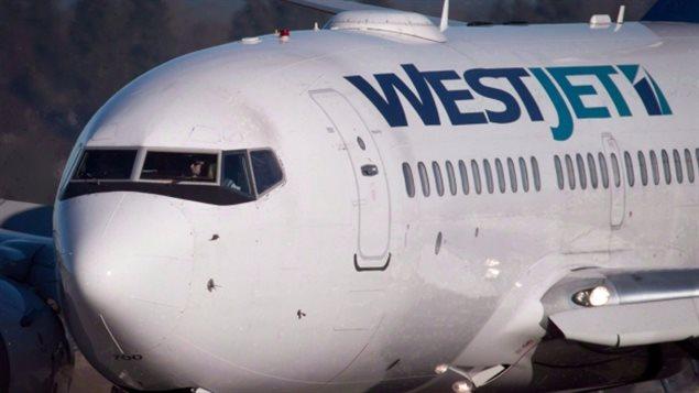 西捷航空:空姐受纪律制裁后反控西捷