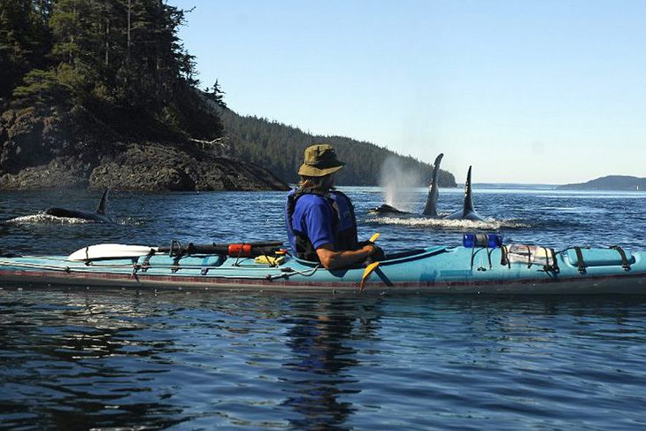 spirit-of-the-west-kayaking-orcas-kayaker-recreation-quadra-island-british-columbia_original (1)