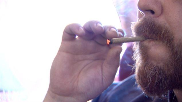 特鲁多说大麻合法化的目的是不让未成年人抽大麻